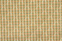 5438018 CITRUS Check Upholstery Fabric