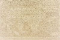 5584913 CRAFTS SHELL CHENILLE Fabric