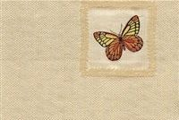 5594111 FLUTTER FLY AWAY Fabric