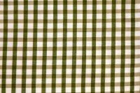 5761012 BENJAMIN THYME GREEN Check / Plaid Fabric