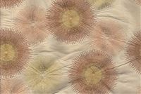 5769423 AYERS / IVORY MIST Embroidered Silk Fabric