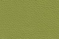 6124124 MEEHAN SPRIG Faux Leather Upholstery Urethane Fabric