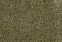 6670319 FLANDERS LICHEN Solid Color Cotton Blend Velvet Upholstery Fabric