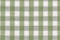 6680139 CHESTER KIWI/WHITE Check Fabric