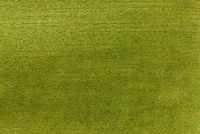 6694254 CANNES MIDORI Solid Color Cotton Blend Velvet Upholstery Fabric