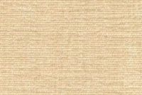 66945AZ CHARISMA/B CANVAS Solid Color Chenille Upholstery And Drapery Fabric