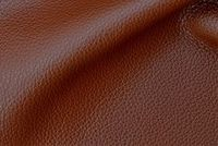 Carroll Leather STREET CRED THOROUGHBRED Furniture Upholstery Genuine Leather Hide