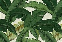 Tommy Bahama Home TBO SWAYING PALMS ALOE 800740 Floral Indoor Outdoor Upholstery Fabric