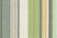 Waverly DRAW THE LINE SWA SPRING 680691 Stripe Print Upholstery And Drapery Fabric