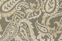 Richloom Fortress Acrylic AYIDEAL FOSSIL Paisley Indoor Outdoor Upholstery And Drapery Fabric