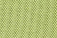Richloom Fortress Acrylic BALLANI SPRING Solid Color Indoor Outdoor Upholstery Fabric