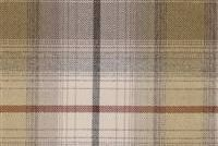 6761913 GLENBROOK EARTH Check Fabric