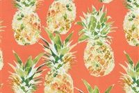 P/K Lifestyles OD OAHU CORAL 407790 Tropical Indoor Outdoor Upholstery Fabric