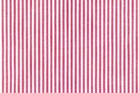 6876320 SANIBEL LOBSTER Ticking Stripe Upholstery And Drapery Fabric
