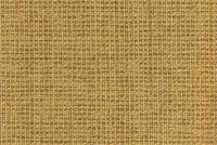 6883217 BATES HONEY Solid Color Crypton Incase Upholstery Fabric