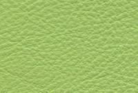 Carroll Leather COLOURS 0263 MAKE MINE A LIME Furniture Genuine Leather Hide Upholstery
