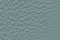 Carroll Leather COLOURS 0265 THE SPA FEEL Furniture Genuine Leather Hide Upholstery