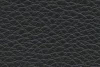 Carroll Leather DECADENCE BLACK BOOK Furniture Upholstery Genuine Leather Hide